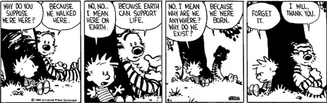 why-calvin & hobbes
